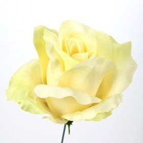 Head of rose, 11,5 cm, satin - cream-green 3 pcs/set