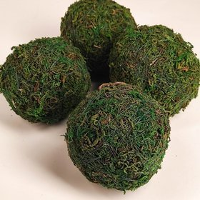 Moss ball 9 cm - 4 pcs / pack