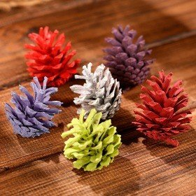 Mountain pine cone, 12 pcs/pkg