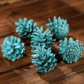 Mountain pine cone, 12 pcs/pkg blue