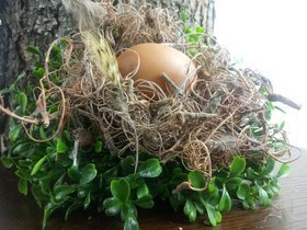 Natural nest with an egg based on durable boxwood 20 cm