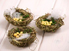 Natural nest with eggs 6-8cm