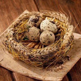 Nest of fragrant ecological hay with quail eggs on birch 15/15 cm