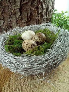 Nest with eggs 15 cm
