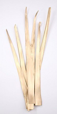 Palm leaf 30-40 cm 6 pcs/pkg gold
