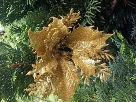 Poinsettia, glittered, green, 18 cm