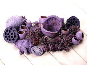 Purple set of dried plants