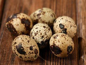 Quail blown eggs 6pcs/pkg