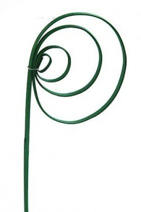 Rattan cane, peacock's eye, 6 pcs/pkg - green