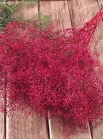 Red gypsophila bunch