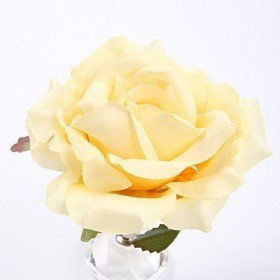 Rose head cream 11,5 cm 3 pcs/set