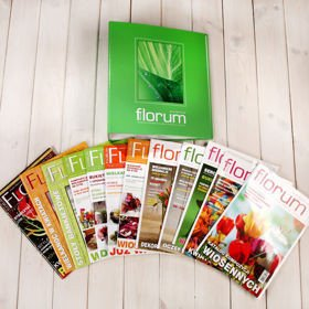 Set of 12 Florum editions for the whole year with a binder