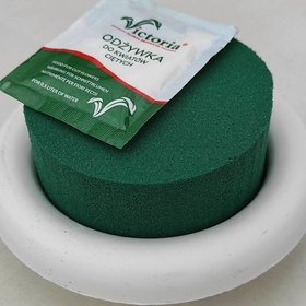 Sponge florist on a white base Sponge wet floristic foam round 8cm