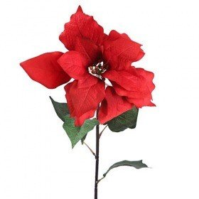 Star of Bethlehem poinsettia 58 cm