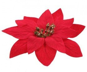 Star of Bethlehem poinsettia red - 4 pcs / p Diameter 12 cm.