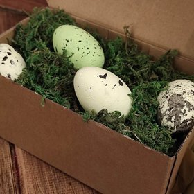 Styrofoam eggs, 6 cm, colored in prepared moss