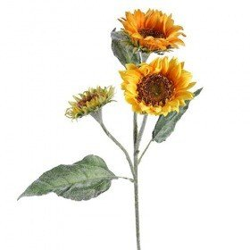 Sunflower three flowers 90 cm