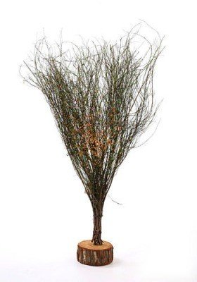 Tree of woody twigs with orange decoration, 60 cm