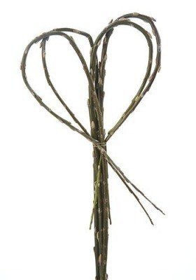 Willow heart stick 50-60cm