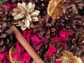 Winter potpourri A.