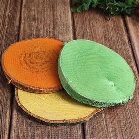 Wood slices for decoration yellow-green-orange 10-12 cm thick. 1-2 cm pack of 3