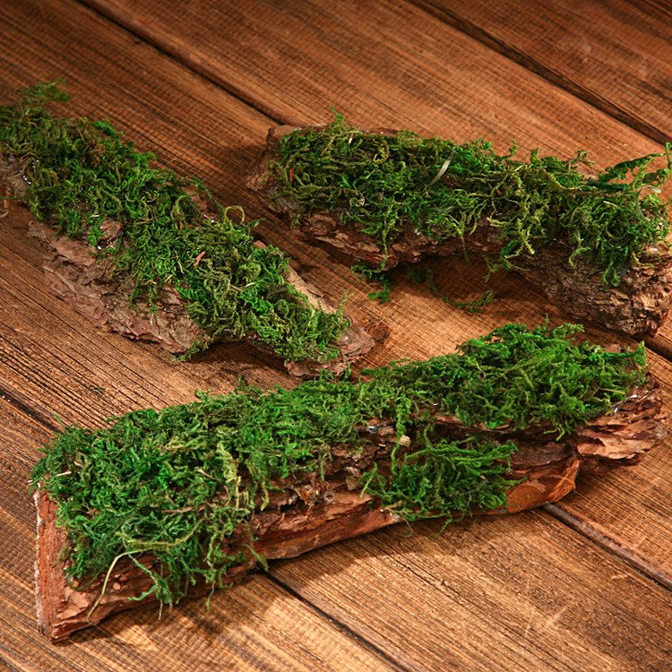 Dried bark decorated with moss- 300 g 5-7 pieces
