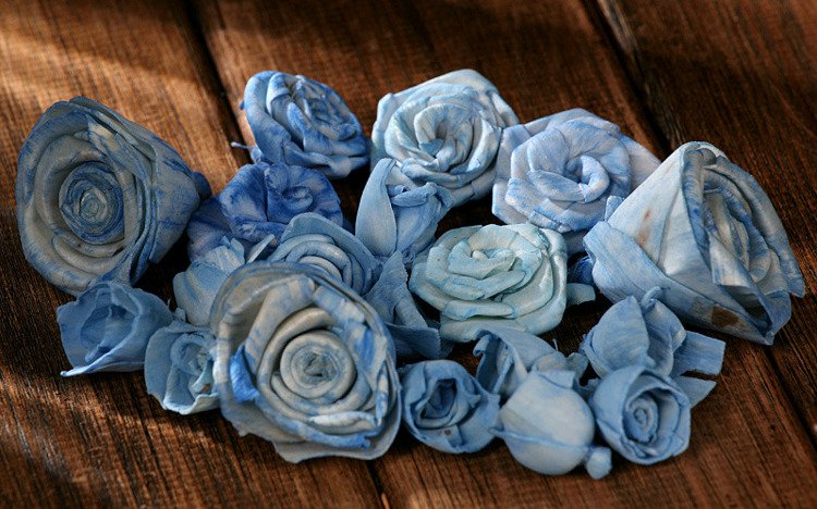 Dried flowers SOLA , 2-3 cm,  60 pcs/pkg sky-blue