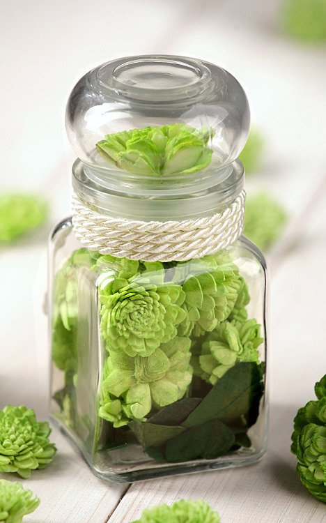 Dry plants in glass container green
