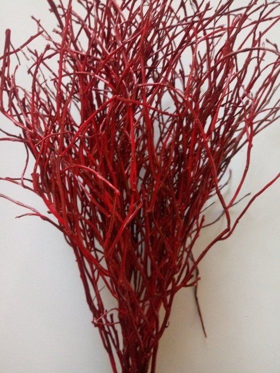 Natural blueberry bunch 8-10 branches length 30 cm red