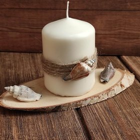 Sea candle on a slice of wood
